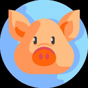 Carne porcina maridar carnes