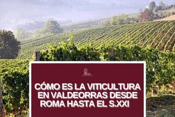 Cómo es la viticultura en Valdeorras desde Roma hasta el siglo XXI viticultura valdeorras